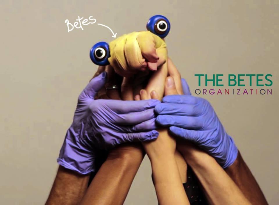 Betes - Betes Organization